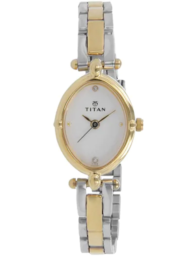 titan silver dial two toned stainless steel strap women's watch nl2419bm01-NL2419BM01